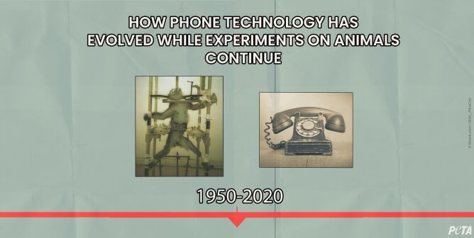Experimenters Remain in the Dark Ages Despite Technology's Constant Evolution