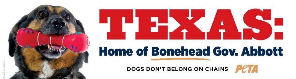Texas: Home Of Bonehead Gov. Abbott
