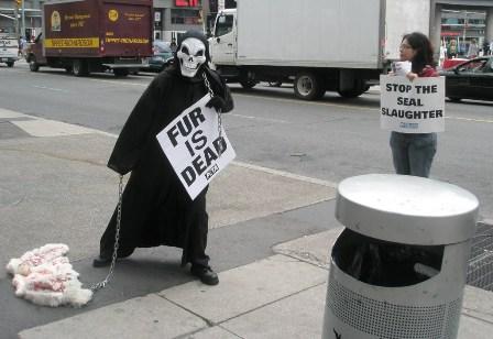 Toronto Grim Reaper