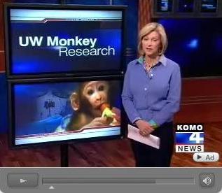 UW_Monkey_Experiments.JPG