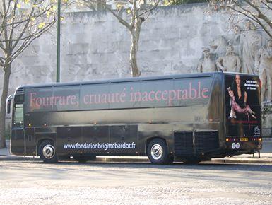 anti-fur bus1.jpg