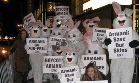 armani_bunnies2.JPG
