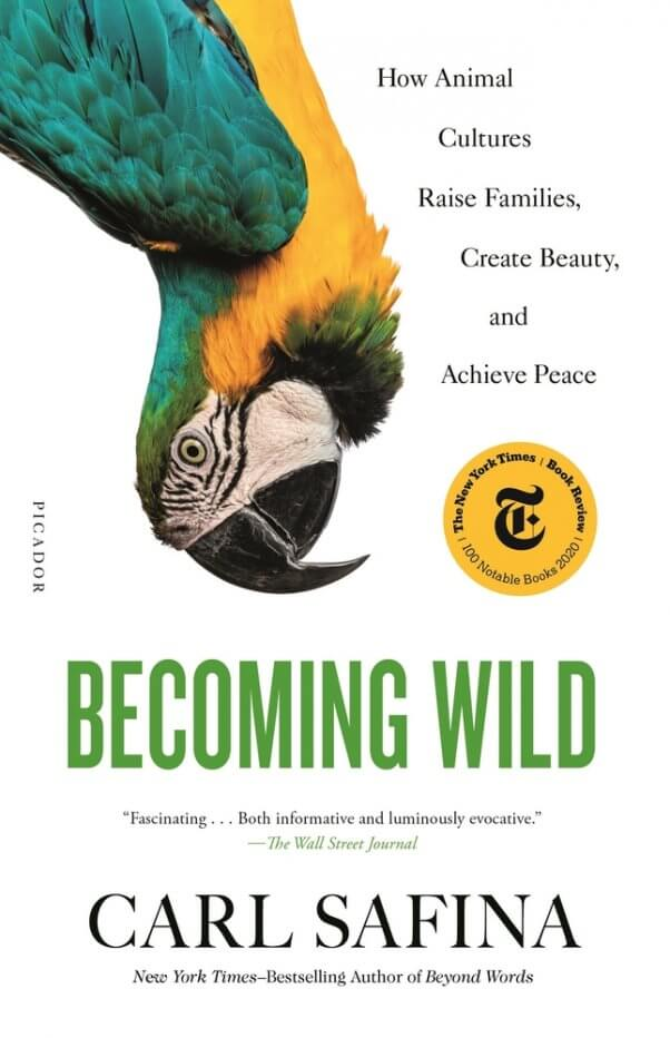 Becoming Wild for PETA's 2021 summer reading list