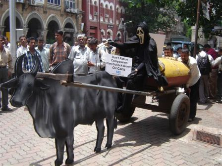 PETA India Demo