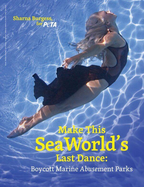 Sharna Burgess in Anti SeaWorld PSA for PETA