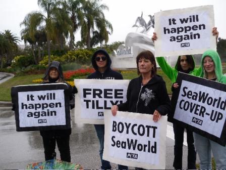 SeaWorld Demonstration