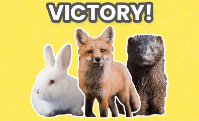 BREAKING: Israel Becomes First Country Ever to Ban Fur