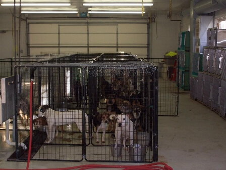 kennels in garage