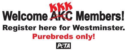 KKK and AKC