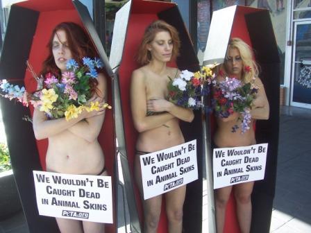 naked_coffin.jpg