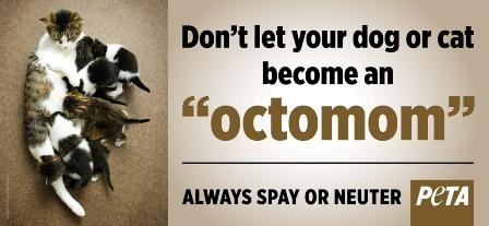 Octomom ad