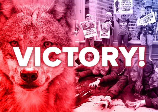 We Did It! Canada Goose Ditches Fur After Massive PETA Campaign
