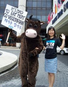 peta_asia_pacific_cow_demo.jpg