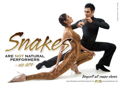 snake_ad.jpg