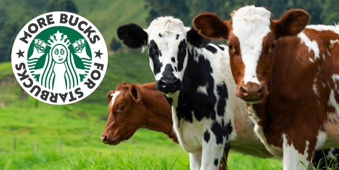Ask Starbucks to Stop Charging Extra for Vegan Milk!