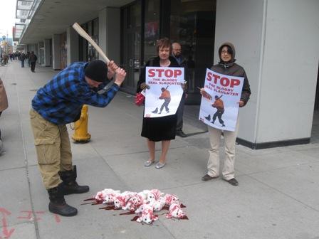 Seal slaughter demo