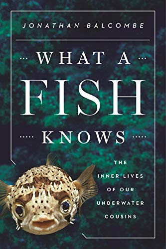 What a Fish Knows for PETA's 2021 summer reading list