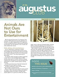 Summer 2012 Issue 60
