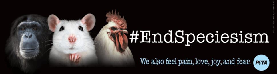 #EndSpeciesism. We Also Feel Pain, Love, Joy, and Fear
