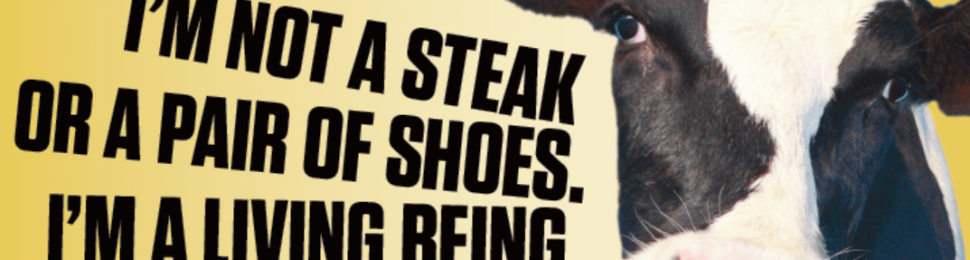 I'm Not A Steak Or A Pair Of Shoes. I'm A Living Being, Just Like You