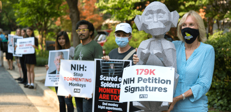 PETA Delivers 'Monkey' Bearing 179,000 Signatures to NIH Director's Home
