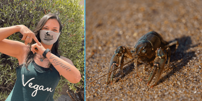 See How This Vegan Teacher Stood Up for Crawfish at Her School