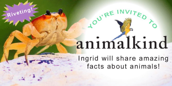 PETA's President Is Back With a 'Crabtivating' End-of-Summer Book Talk