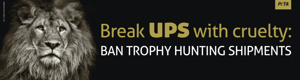 Break UPS With Cruelty: Ban Trophy Hunting Shipments