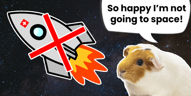Victory! Guinea Pig Spared Space Flight After PETA Steps In