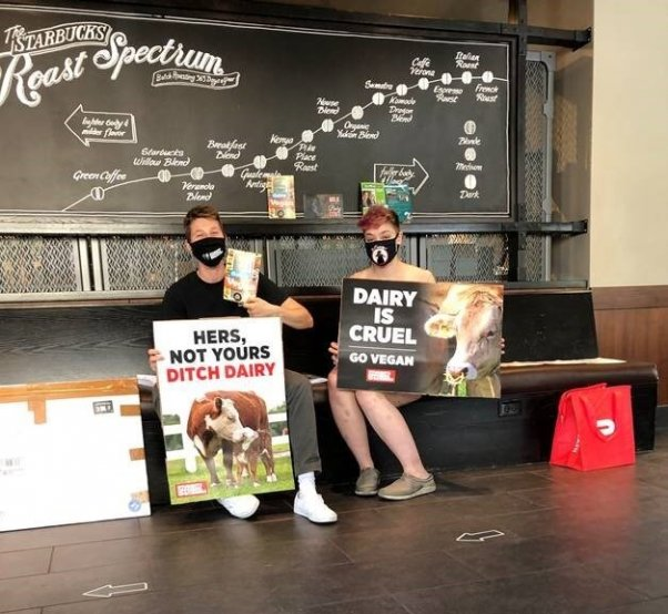 2 students literally sit in a Starbucks with their protest signs against the vegan meat surcharge