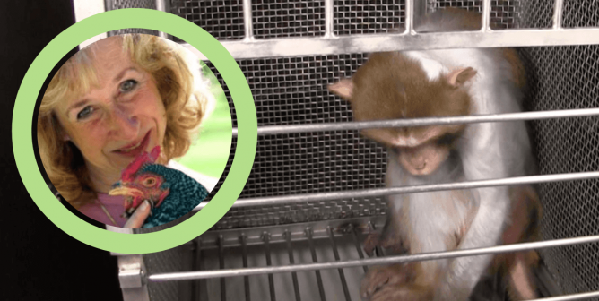 Bestselling Author and Animal Expert to NIH: 'I Am Shocked'