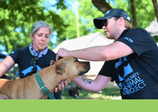 Ride Along With PETA's Field Team! We'll Show You How to Help 'Backyard Dogs' in Your Community