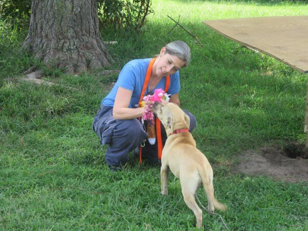 peta fieldworker playing with dog