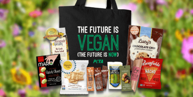 Want to Help Your Friends Go Vegan? It's in the Bag With PETA's Picnic Pack