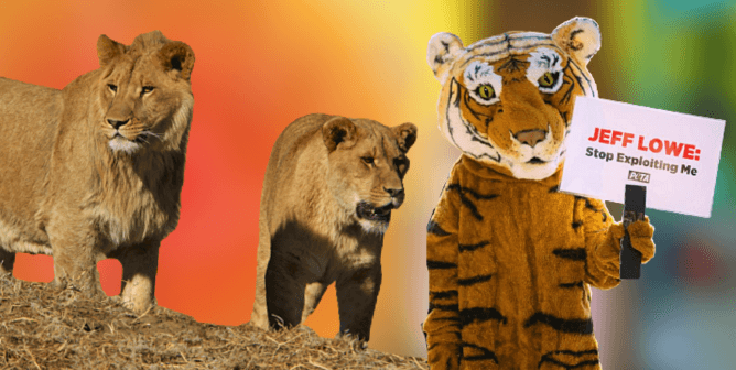 'Tiger King 2': A Lot Has Changed Since Season 1, Thanks to PETA and YOU