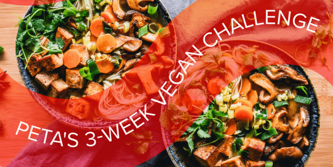Try Something New With PETA's 3-Week Vegan Challenge