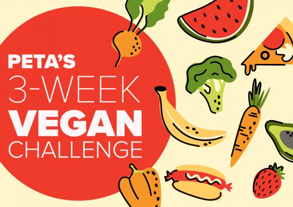 PETA's 3 week vegan challenge illustration