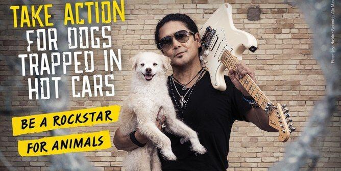 Watch Chris Pérez Use His 'Selena y Los Dinos' Guitar to Save Dogs