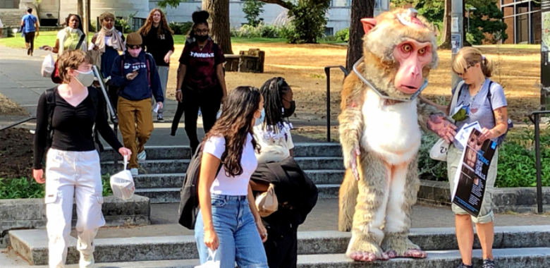 Larger-Than-Life 'Monkey' Turns Heads on UW Campus