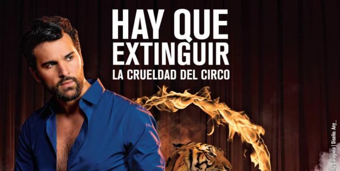 Juan Pablo Di Pace: Hay Que Extinguir La Crueldad Del Circo