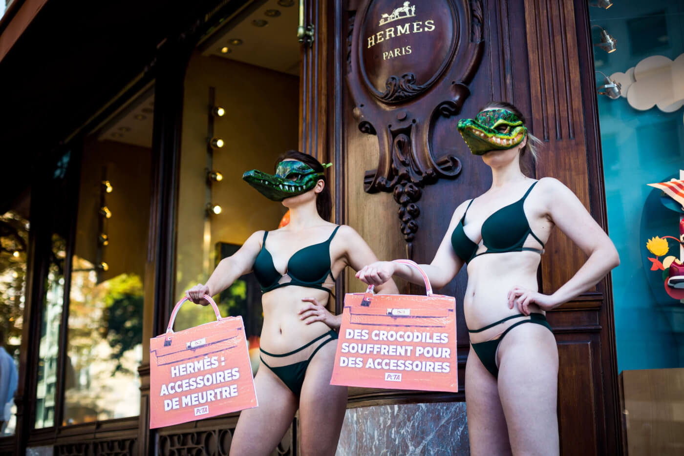 worldwide protests push Hermes to ban exotic skins