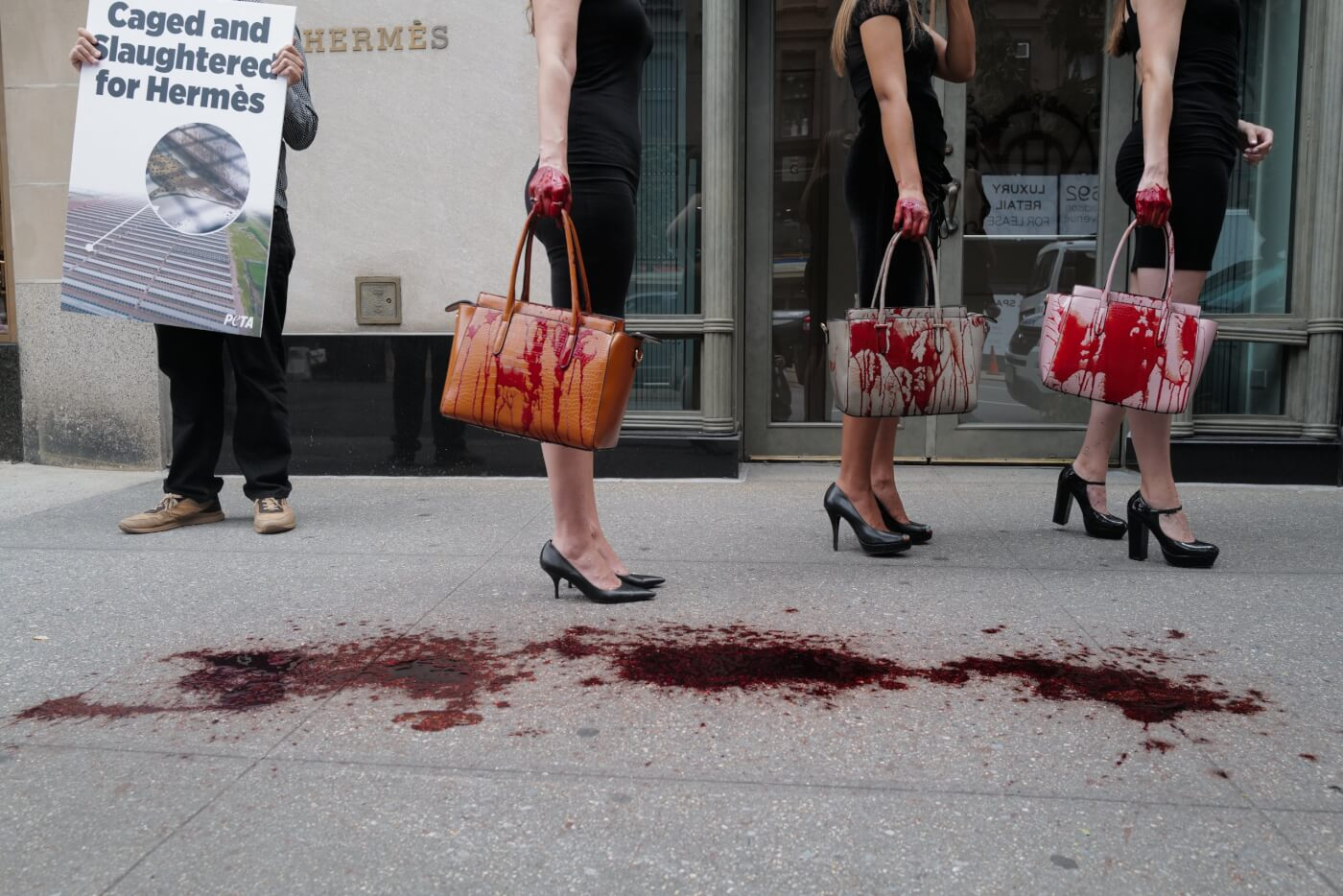 PETA supporters urge hermes to ban exotic skins in NYC amid global protests