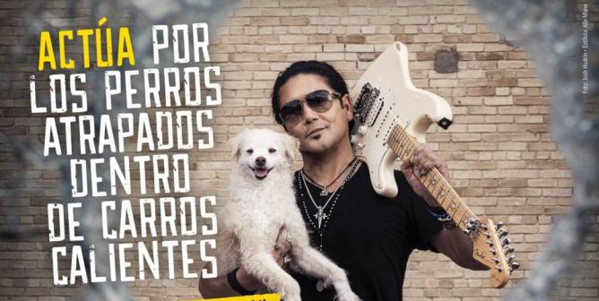 Chris Pérez: Actúa Por Los Perros Atrapados Dentro De Carros Calientes
