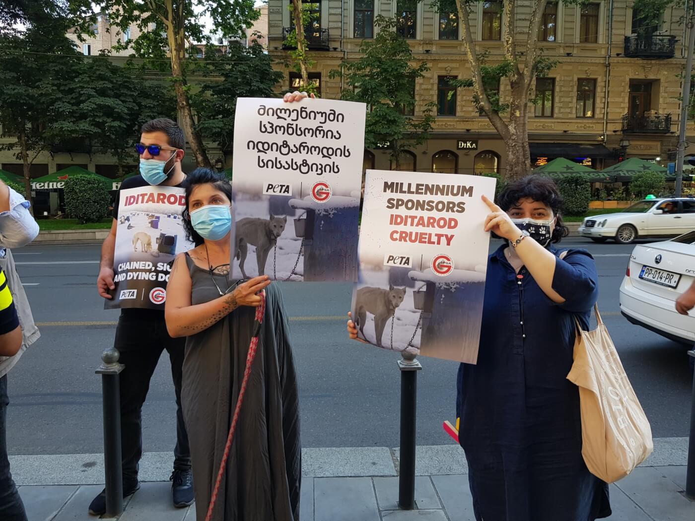 Tbilisi PETA Millennium Hotel Protest