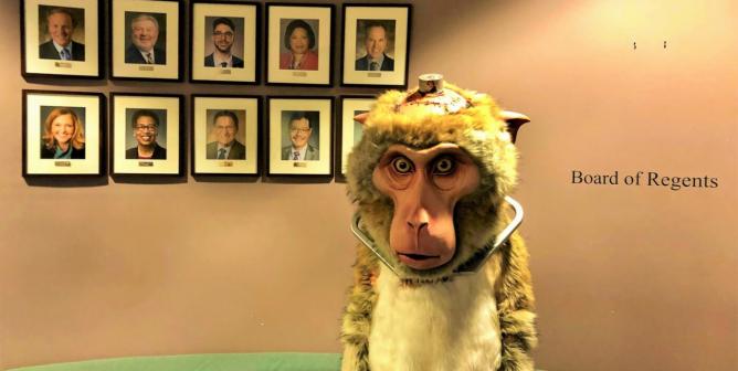 Updates: Campaign to Shut Down University of Washington's Primate Center