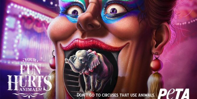 Your Fun Hurts: New Ad Campaign Shows Dark Side of Animal Circuses