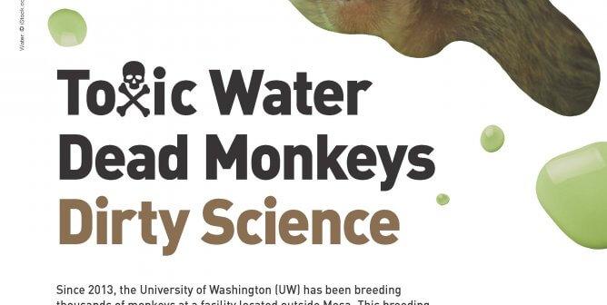 Toxic Water, Dead Monkeys, Dirty Science