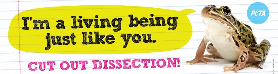 I'm A Living Being Just Like You. Cut Out Dissection!