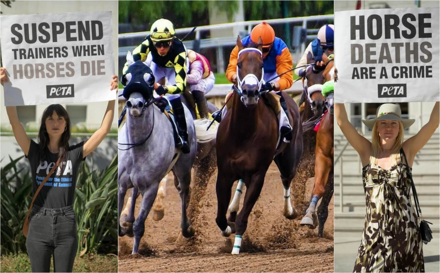 Mox Nix Death Prompts Promise for Ohio Racetrack Rules Changes