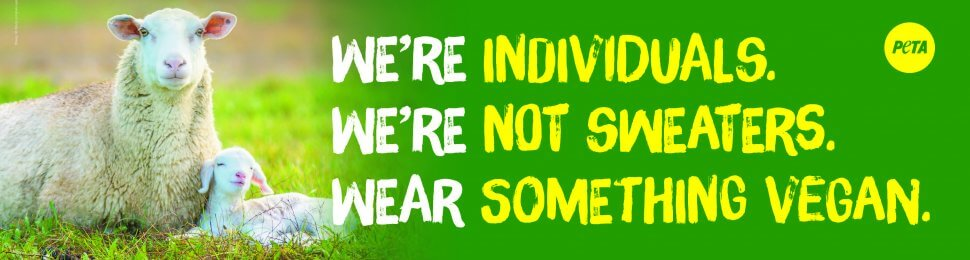We're Individuals. We're Not Sweaters. Wear Something Vegan